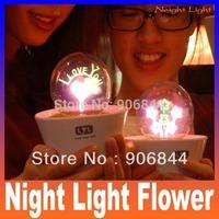 Romantic Fireworks Night Light Flower LED Lamp Artificial Grass Potted Plants kids Night Lighting Best Gift lover star master