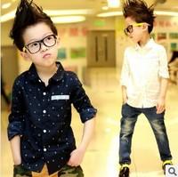 Cotton ! child shirt polka dot shirt long-sleeve children's clothing male child autumn 2013