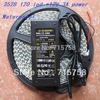 DC 12V 3A Power Supply Adapter+5M LED Strip 3528 Waterproof White LED Strip 3528 smd 600LEDs Strip Light 120led/m strip for car