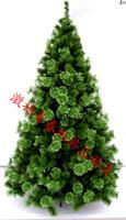 Christmas luxury encryption pine christmas tree christmas tree 2.1 meters plus size christmas tree  =sd2.1-2