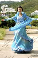 Costume hanfu child costume 3 houndsberry skirt women's costume