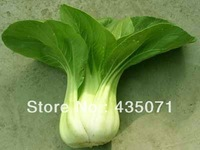 Organic Heirloom 1000 Seeds / bag Garden Chinese Cabbage Pak Choi Vegetable Plant Bulk Fresh Seeds