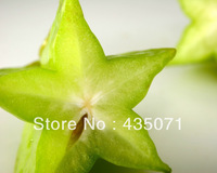 Heirloom Organic 10 Seeds / bag Star Fruit Tree Shrub Seeds Fruit Seeds AVERRHOA carambola Starfruit