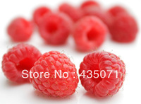 Organic Heirloom 100 Seeds / bag Raspberry Raspberries Seeds RED Rubus Idaeus Bush Fruit Berry