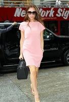 Free shipping Summer women's 2013 one-piece dress victoria pink plus size mm one-piece dress xxl  +gift