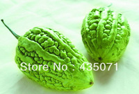 Organic Heirloom Chinese Bitter Gourd 20 seeds Bitter Melon (Large Top) bitter Squash Momordica charantia Edible
