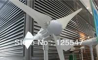 Free shipping 1000w wind generator windmill,wind turbine,high quality,CE,ROHS,ISO9001