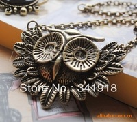 2013 New Fashion Korean Jewelry Wholesale Frozen Vintage Owl Long Sweater Necklace