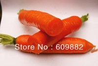 1 bag Original package 5g 300+pcs red Japanese special grade carrot seeds free shipping organic seeds vegetables