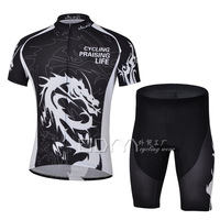Brand cheji 2013 Dragon Knight professional models short-sleeved cycling jersey suit perspiration ventilation equipment