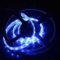 IP66 Waterproof 1M SMD 3528 LED Strip Light 60 LED Blue DC 12V 4.8W