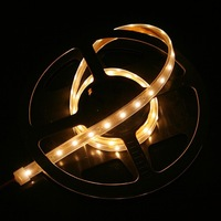 IP66 Waterproof 1M SMD 3528 LED Strip Light 60 LED Warm White DC 12V 4.8W