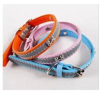 Hot Sale New Bones Reflective Dog Collar Pet Collar Pet Supplies HG-04705