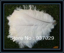 wholesale ostrich drabs