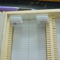 100pcs human histology slide set with plastic box