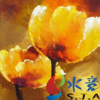 Caixa do medidor de água pintura a óleo retrato pintura decorativa pinturas casa de madeira da flor da papoila(China (Mainland))