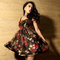 Sweet print fashion party dress puff skirt sexy one-piece dress 2013 women's