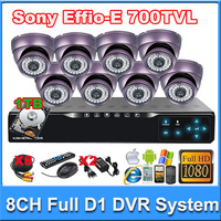8CH Full D1 HDMI 1080p  touch panle security DVR with 8pcs Sony Effio CCD 700TVL Dome camera for CCTV System kit 1TB hard disc