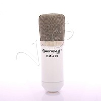 White Cardioid Directivity Condenser Recording Microphone for Studio Stage