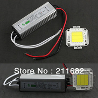 One 10W 20W 30W 50W 100W COB High Power LED chip LED Bulb IC SMD Lamp Light + One LED power supply Led driver