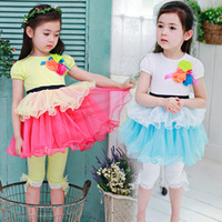 Clothing female child 2013 summer one-piece dress baby summer short-sleeve princess dress girl z