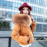 Free shipping, Large raccoon fur women's down coat short down coat female design