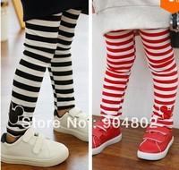 New arrived spring autumn children kids stripes Leggings girl child baby trousers full length pants 5pcs/lot Free shipping!