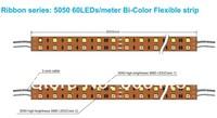 Bi-Color CW + WW 120led/m Double Row 5050 Color Temperature Adjustable Two Color LED Strip