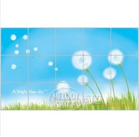 Hot Sale of PVC 45*75CM beautiful blue dandelion ceramic tile-high temperature pollution prevention wall stickers FREE SHIPPING