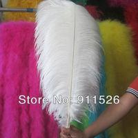 Cheap ostrich feather 50pcs 20-22 inches 50-55cm white Ostrich plumage ostrich plume