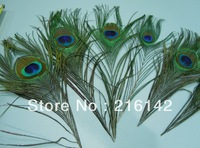 Free shipping top quality 100pcs/lot 25-30cm beautiful natural peacock feather