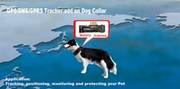 Real Time,GSM/GPS Dog Collar Tracker-Pets hidden GPS tracker for med/Large Dogs