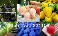 50 PCS / 6 Types of Strawberry Seeds, Black White, Yellow, Blue Giant Strawberries, free shipping