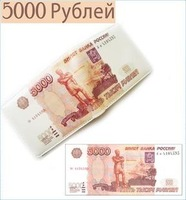 Free shipping 2013 New Handmade 5000 roubles Wallets / 5000 RUB Purse Novelty Gift Supernova Sale