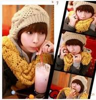 2013 New Brand Warm&Beautiful Winter Knitted Wool Hat Women's Cap twist Kintting Lady Beanie Hats Free Shipping