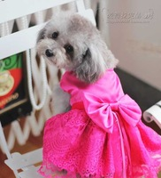 Free shipping Rose Red Cute Lace clothing Pet Skirt pet dog skirt wedding dress Size XS/S/M/L/XL