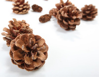 Christmas tree small christmas pinecone 5cm 6 christmas hangings christmas supplies