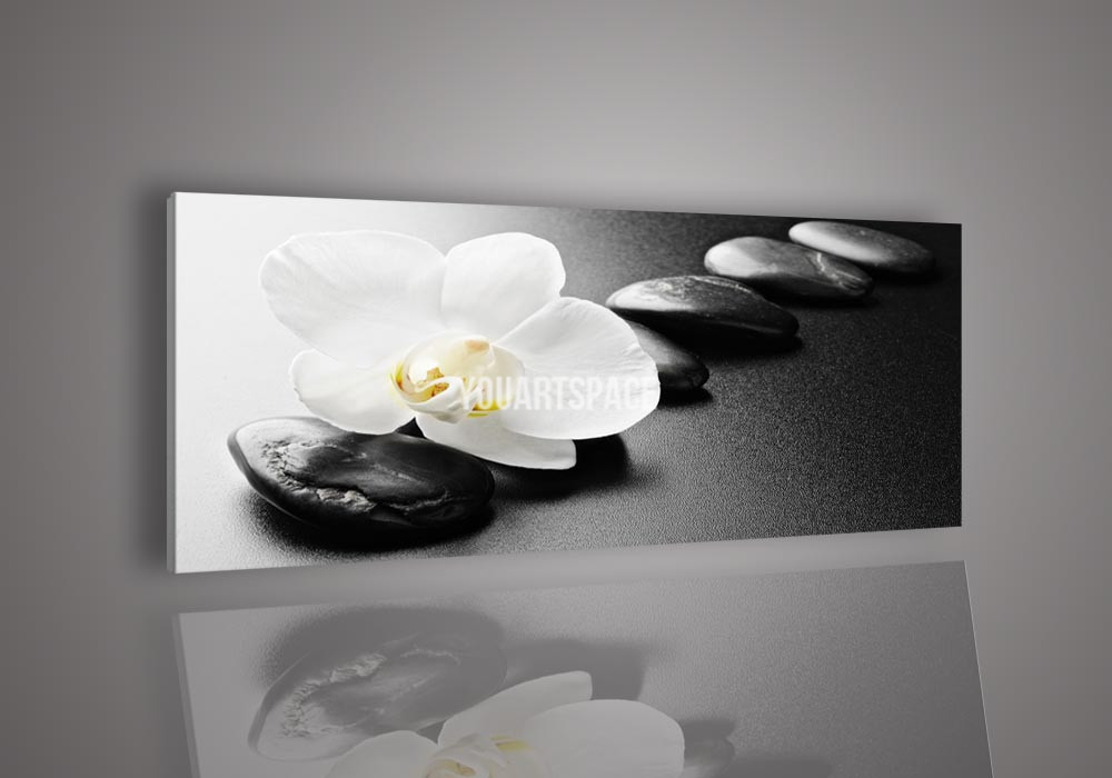 Abstract Black And White Flower Photography Flower Black Amp And White