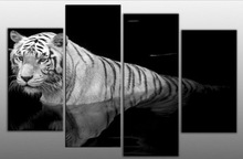 wholesale tiger picture