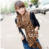 The new dual-use winter scarves women shawl scarf chiffon scarf wholesale long section Fashion geometry print scarves