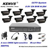 8CH H.264 Standalone Network DVR 8pcs 900TVL HD 3.6mm lens Outdoor IR Camera VIdeo CCTV System Kit free shipping