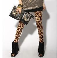 2013 New Printed Leopard Chiffon Harem Pants Women Elastic Waist Ladies' Trousers Autumn Pants Plus Size/Free shipping