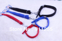 2013 Free Shipping! High quality Set of Collar with Leash.Adjustable dog collar and leash with comfortable  foam TCC-053