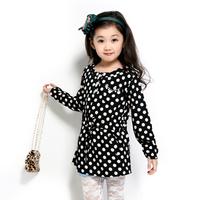 Children's clothing 2013 spring and autumn female medium-large one-piece dress child long-sleeve dress 3158