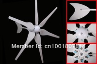 300w Wind Turbine 6 blades Small Wind Generator 12V or 24V Power Generator green energy supplier