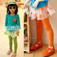 Free shipping 5pcs/lot new fashion girls cotton leggings with dots skirt/ children spring autumn wear