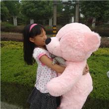 pink plush bear promotion
