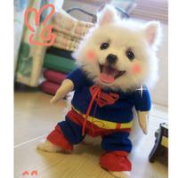 Free shipping Dog super man the loading dog clothes summer wellsore cos super man clothes cat pet clothes