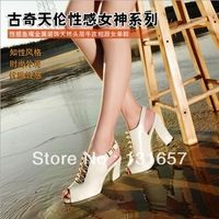 NEW 2013 Fashion Sandals For Women,Guciheaven Fish Mouth Thick Heel Sandals, Platform Female Shoes.X-026