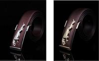 New 2013 leather belt leopard belt Jin Bao agio